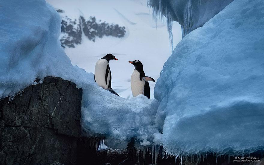 nature-photography-antarctica-airpano-1
