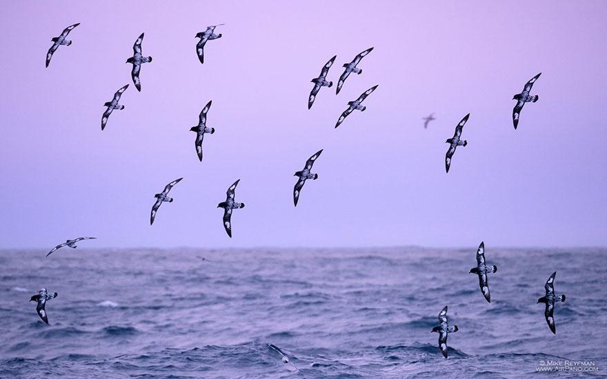 nature-photography-antarctica-airpano-3