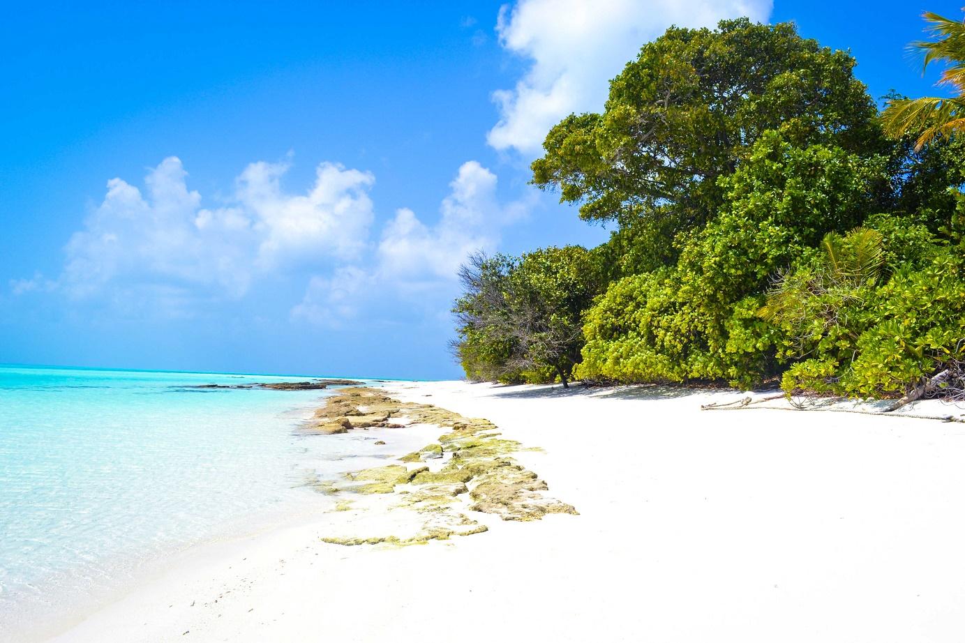 Ostrov pro piknik