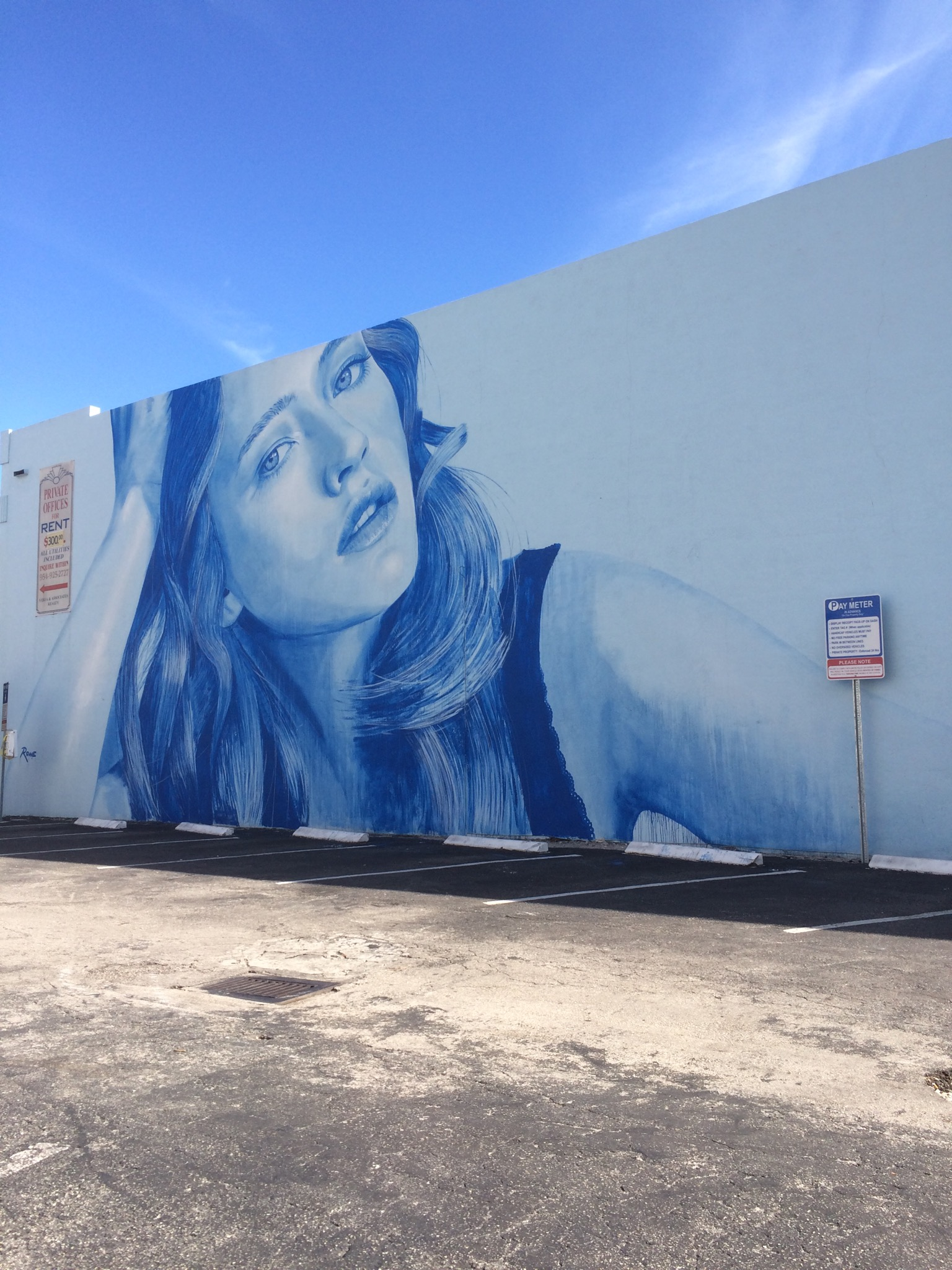 Rone street art Hollywood Florida