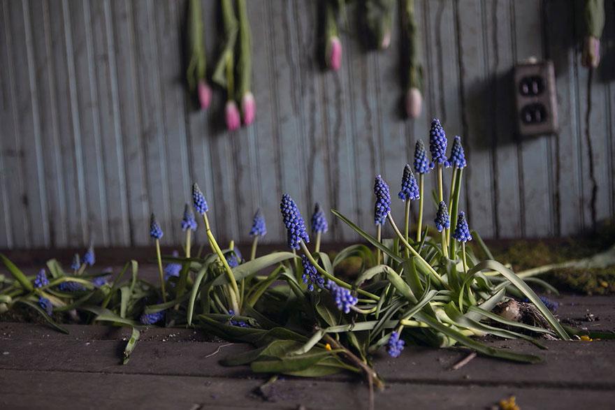 abandoned-flower-garden-house-building-detroit-lisa-waud-8