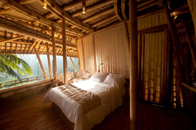 bambus4