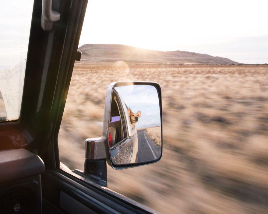"""""""Tolik cest, kterých jsme ujeli..."""" / Antelope Island"""