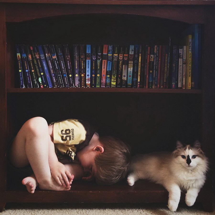 Maminka zachytila sladké pouto mezi svými syny a kočkami