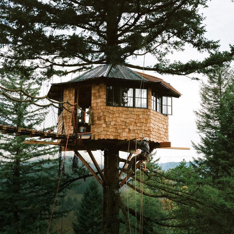 Fotograf si splnil dětský sen a postavil dům na stromě