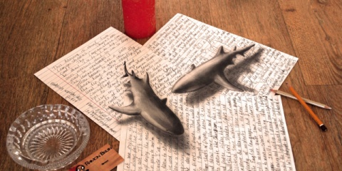 book_of_sharks_20140505_1565533538