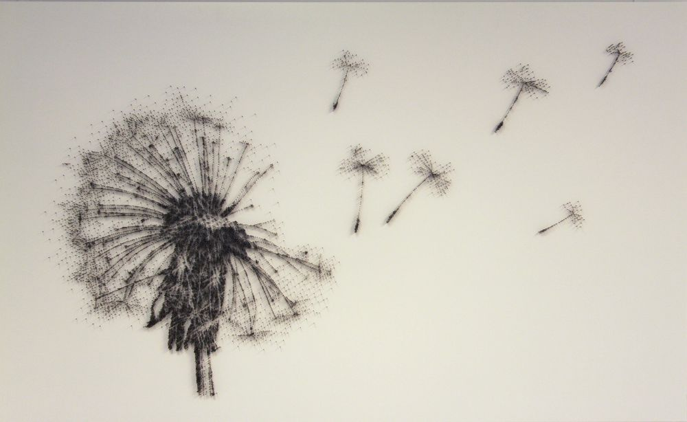 David Foster - Detailní obrazy z hřebíků, pampeliška
