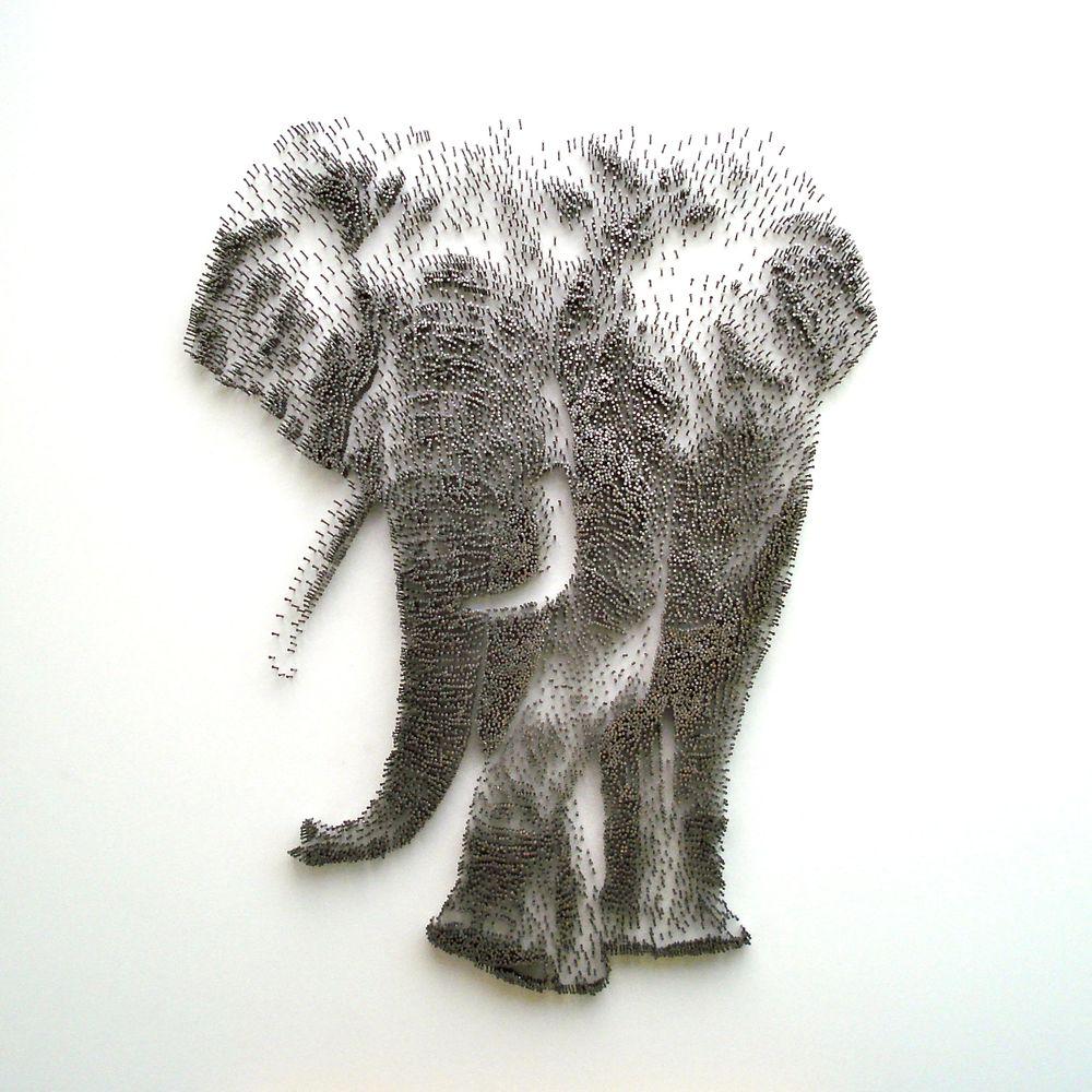 David Foster - Detailní obrazy z hřebíků, slon africký