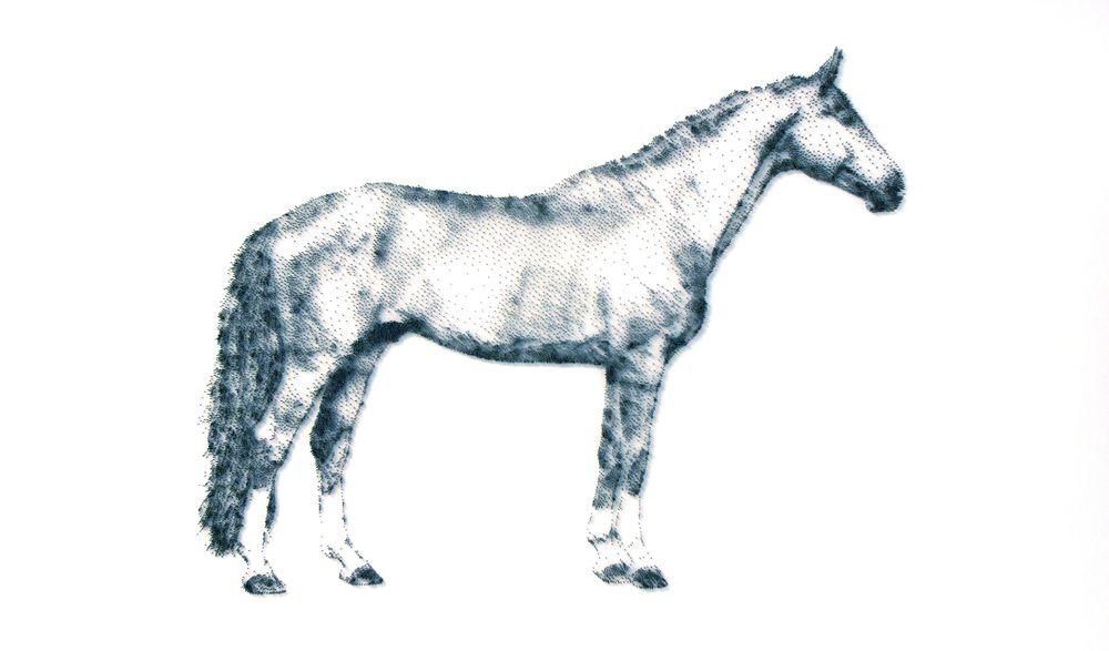 David Foster - Detailní obrazy z hřebíků, kůň