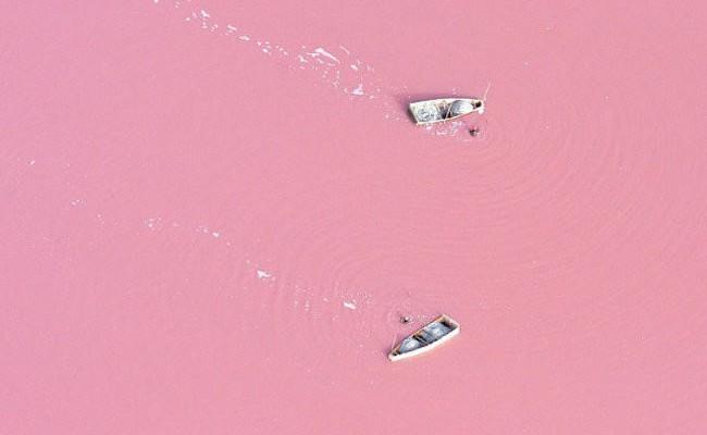 pink_lake-650x454