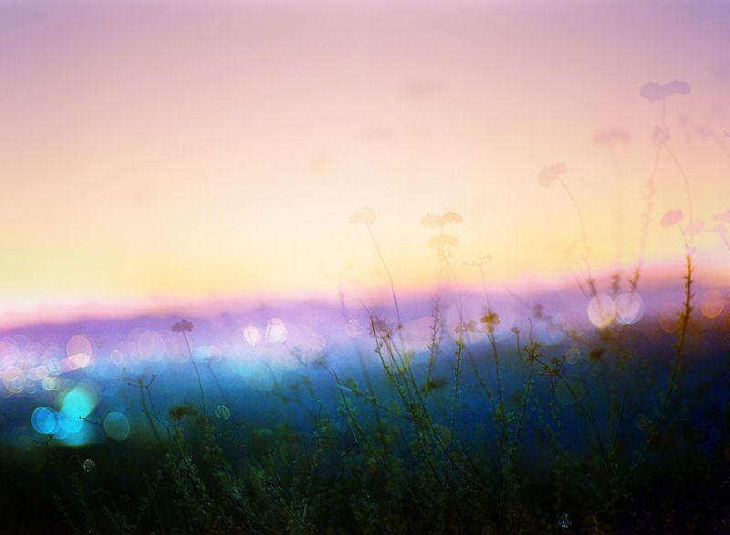 Anthony Samaniego - dvojitá kompozice v jemných barvách