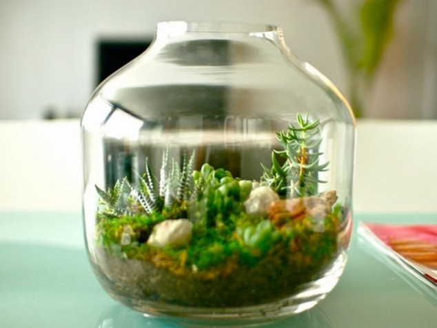 AD-Adorable-Miniature-Terrarium-Ideas-For-You-To-Try-15