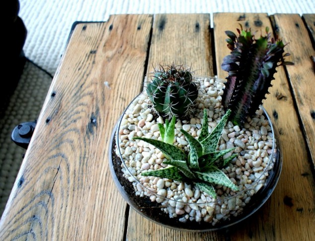 AD-Adorable-Miniature-Terrarium-Ideas-For-You-To-Try-17