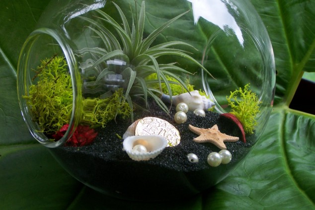 AD-Adorable-Miniature-Terrarium-Ideas-For-You-To-Try-25