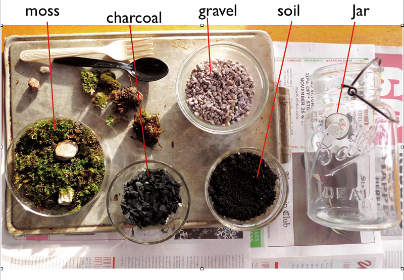 AD-Adorable-Miniature-Terrarium-Ideas-For-You-To-Try-TheBasics