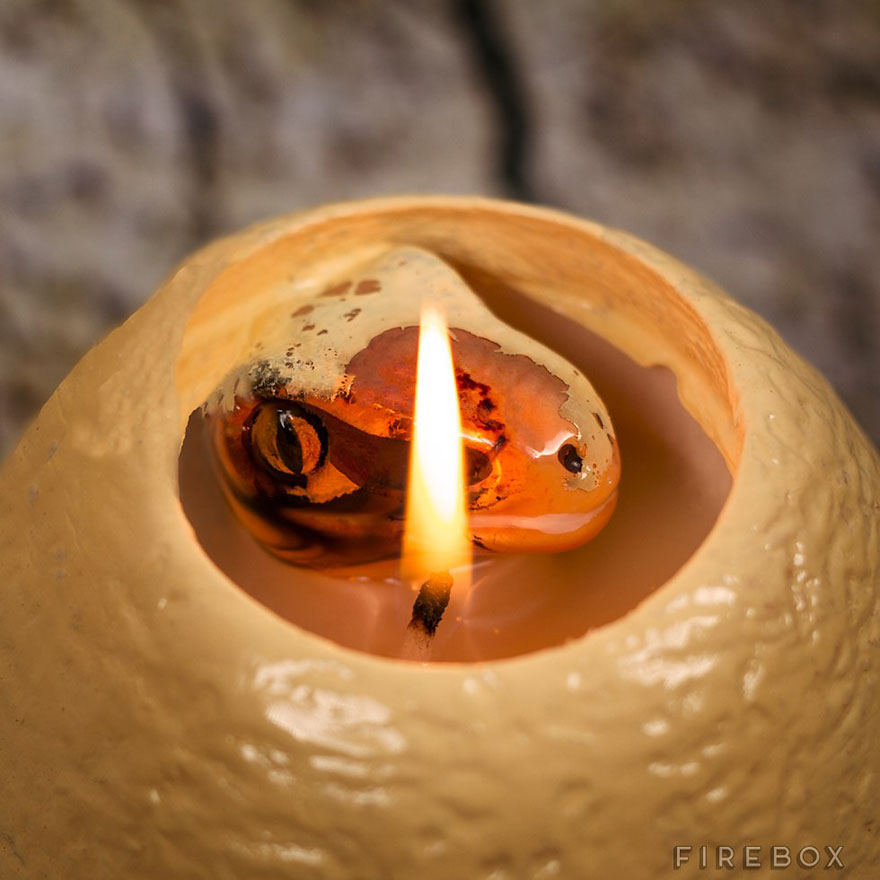 hatching-dinosaur-candle-raptor-firebox-3