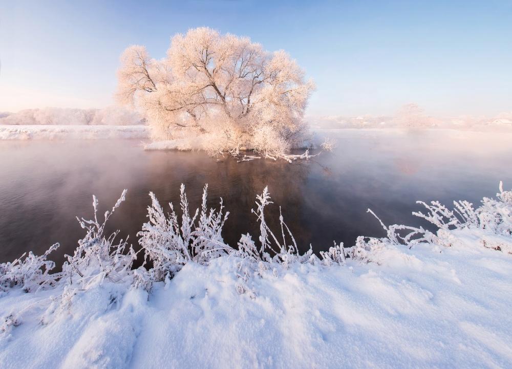 winterbeauty06