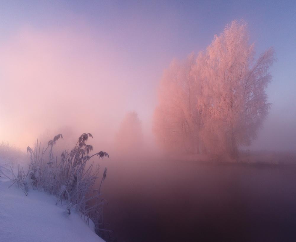 winterbeauty10
