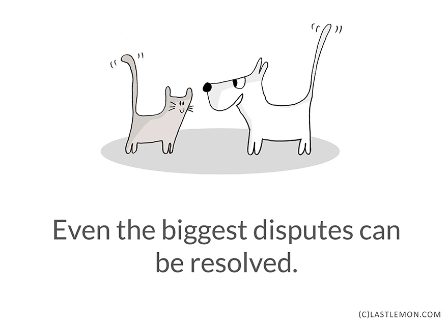 21-Hilarious-Cute-and-Insightful-Life-Lessons-from-Cats10__880