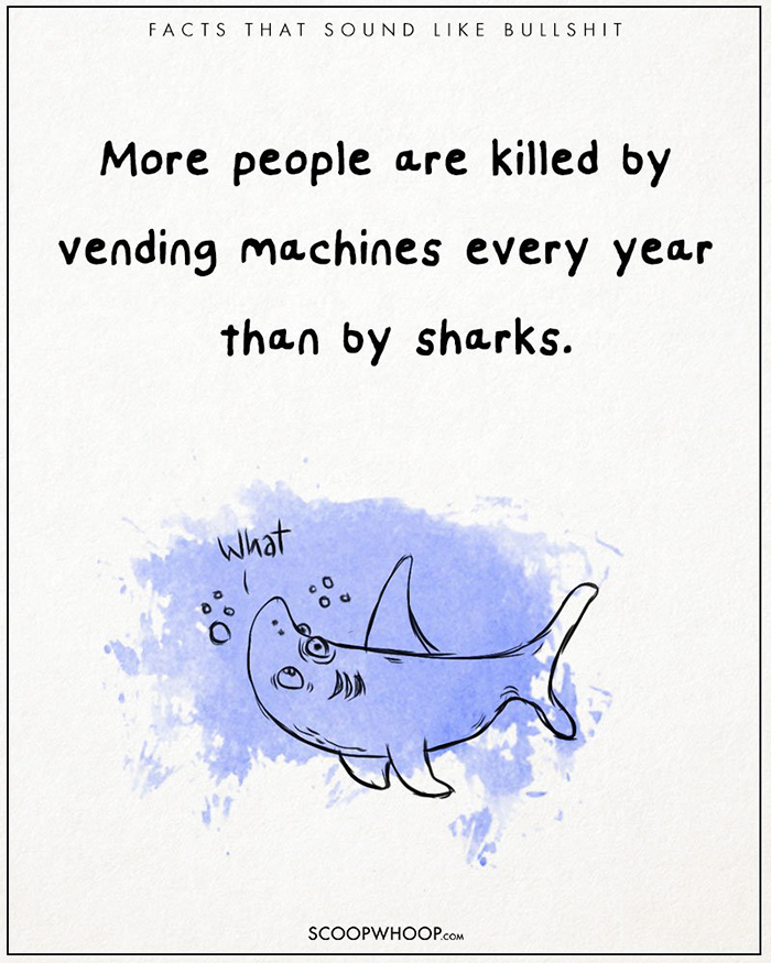 21 Více lidí ročně zabijí prodejní automaty, než žraloci.