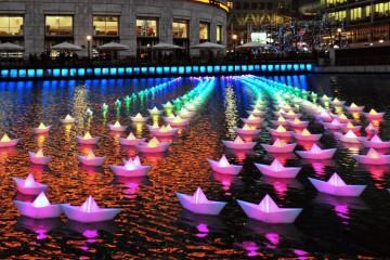 Light City Festival