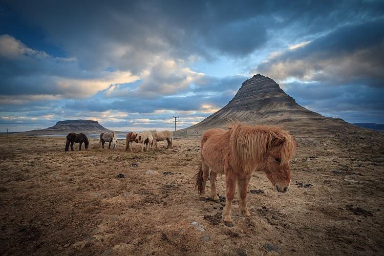 Grundarfjörður, Island