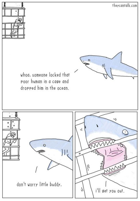 funny-animal-comics-they-can-talk-jimmy-craig-13-57469f8462f5a__605