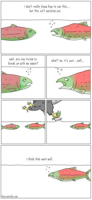 funny-animal-comics-they-can-talk-jimmy-craig-14-57469f868d6c6__605