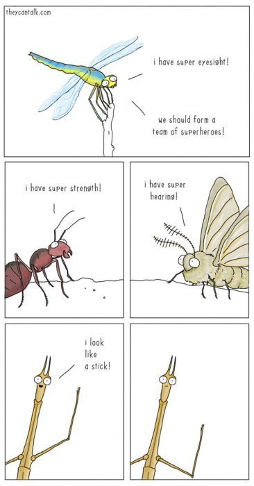 funny-animal-comics-they-can-talk-jimmy-craig-16-57469f8b8bad0__605
