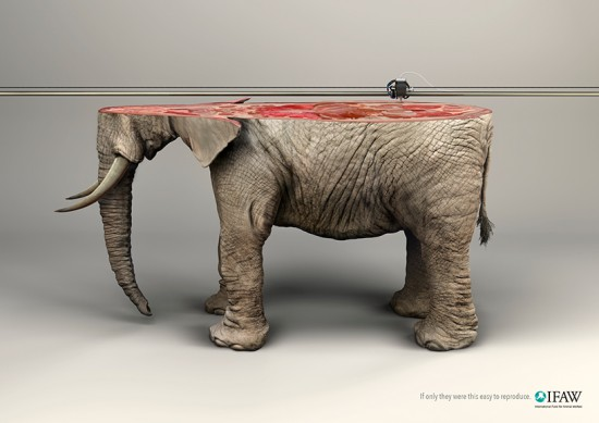 young-rubicam-IFAW-campaign-3D-printed-animals-designboom-11