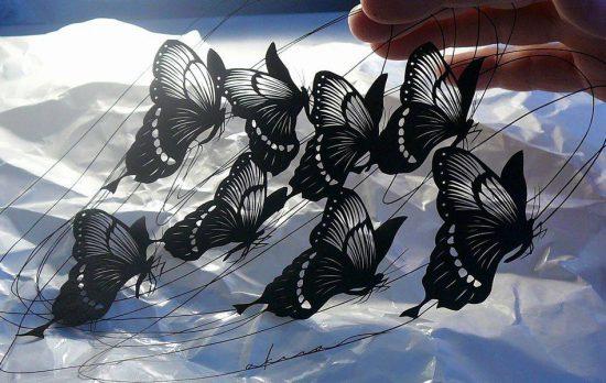 motýli - Akira Nagaya