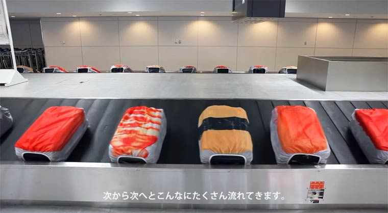 Sushi-Suitcases-4