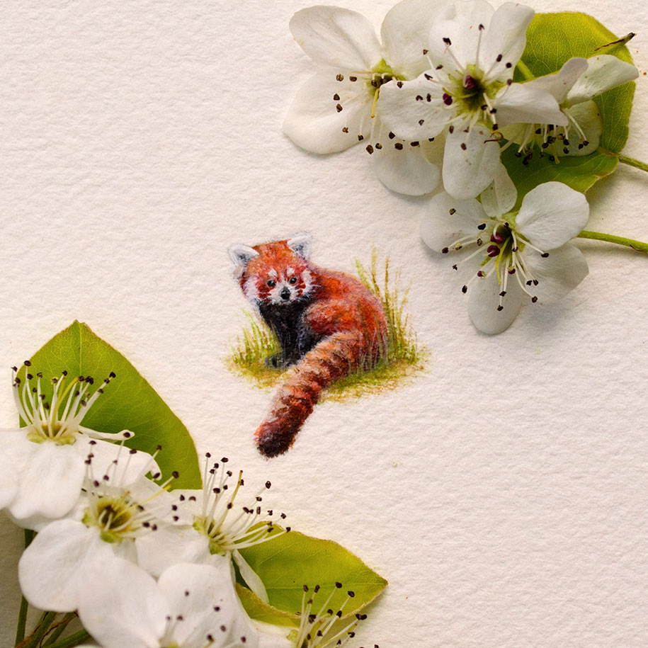 cute-miniature-watercolor-paintings-rachel-beltz-13