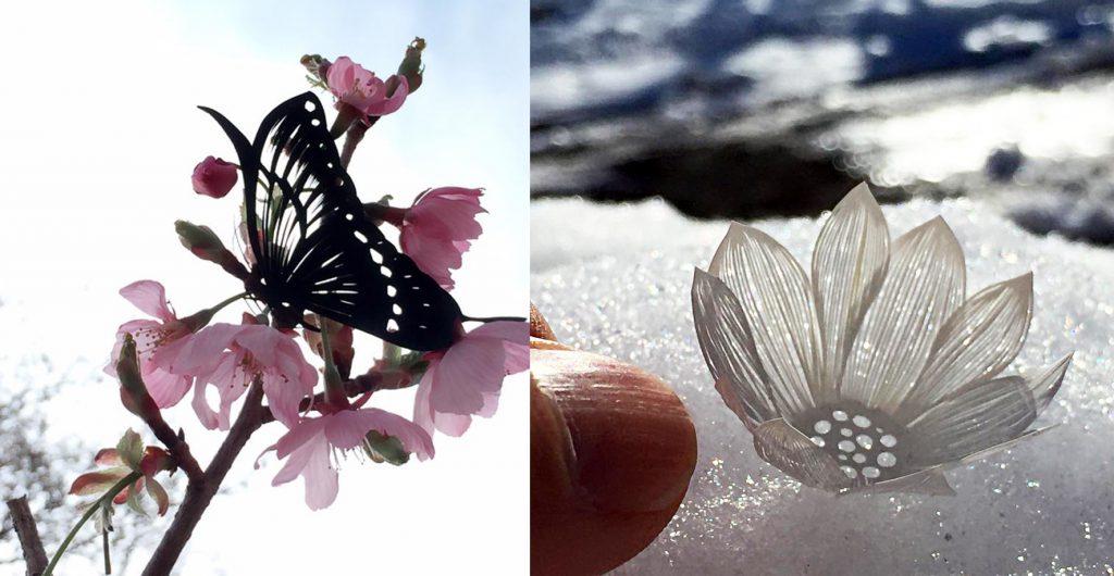 motýl a květina - Akira Nagaya