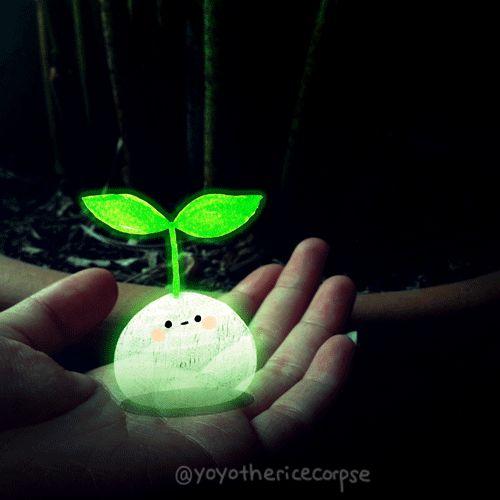 yoyo-the-ricecorpse-1