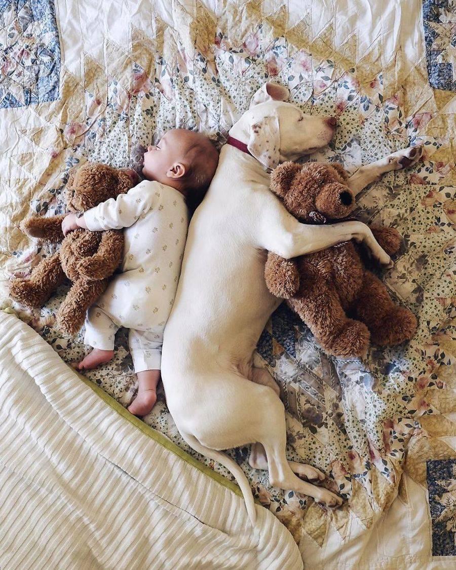 babypuppy-6-900x1124