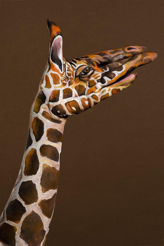 phoca_thumb_l_giraffe-profile-hand-painting