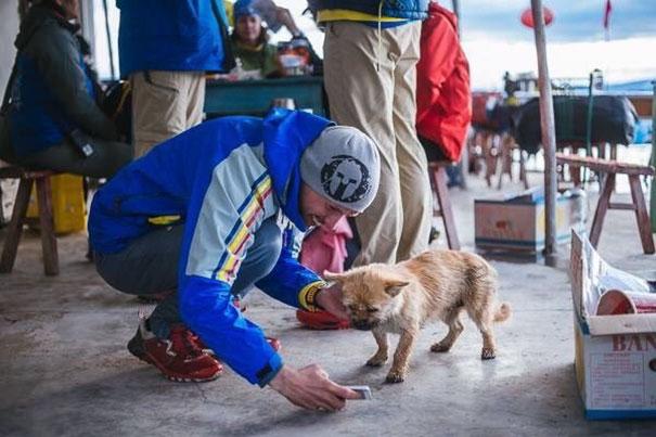stray-dog-joins-race-gobi-dion-leonard-china-6