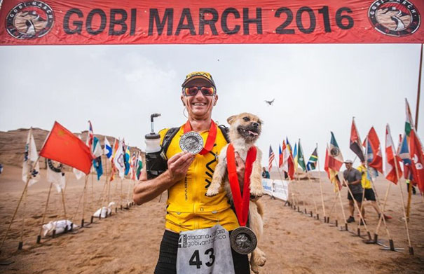 stray-dog-joins-race-gobi-dion-leonard-china-9