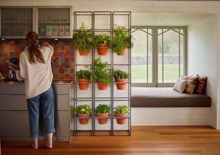 verticalgarden4