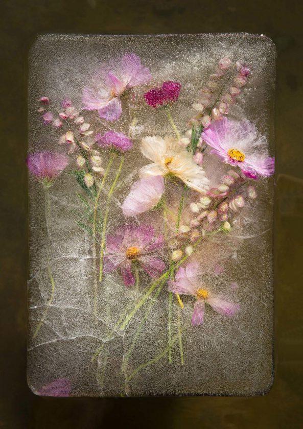 compositions-florales-glace-09-593x840