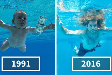 nirvana-baby-recreates-nevermind-album-cover-spencer-elden-john-chapple-coverimage2