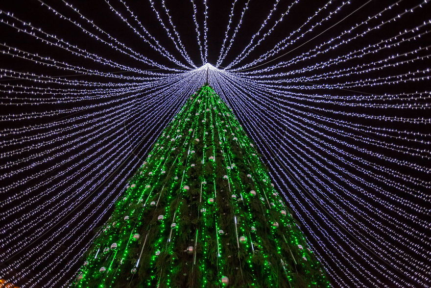 christmas-tree-illuminated-by-50000-lightbulbs-opens-festive-season-in-vilnius-583c0da573898__880