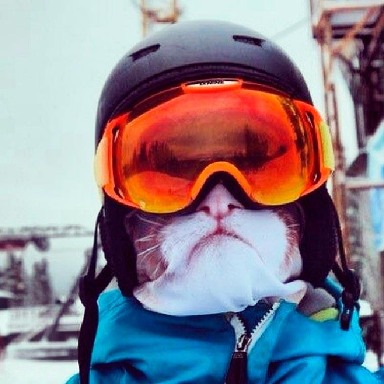 animal-ski-masks-1