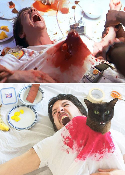 movie-cats-recreate-famous-movie-scenes-1-5833fcdd61693__700-1
