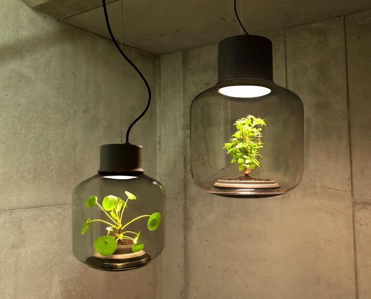 Výsledek obrázku pro lampa na pěstování rostlin