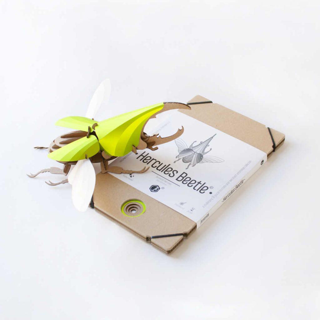 paper-beetles-5