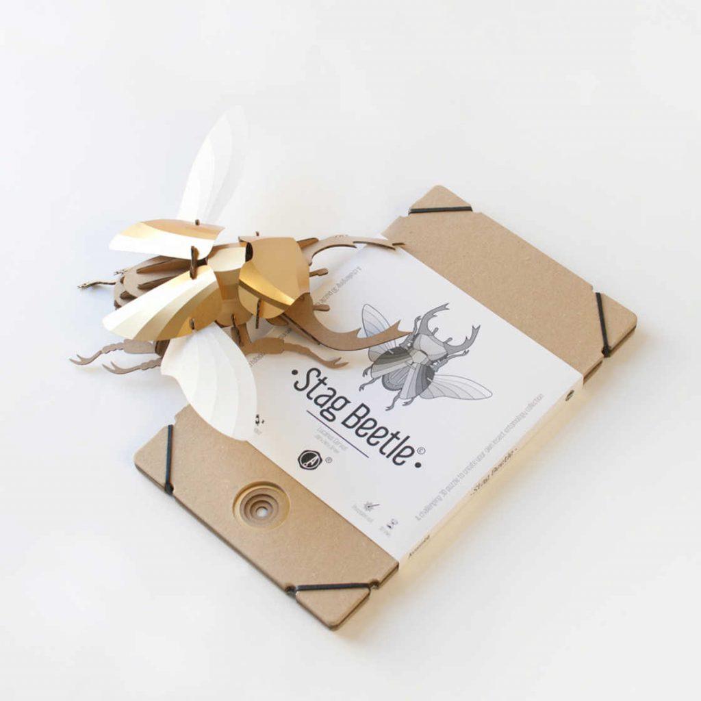 paper-beetles-6
