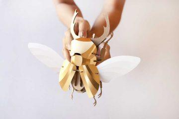 paper-beetles-9