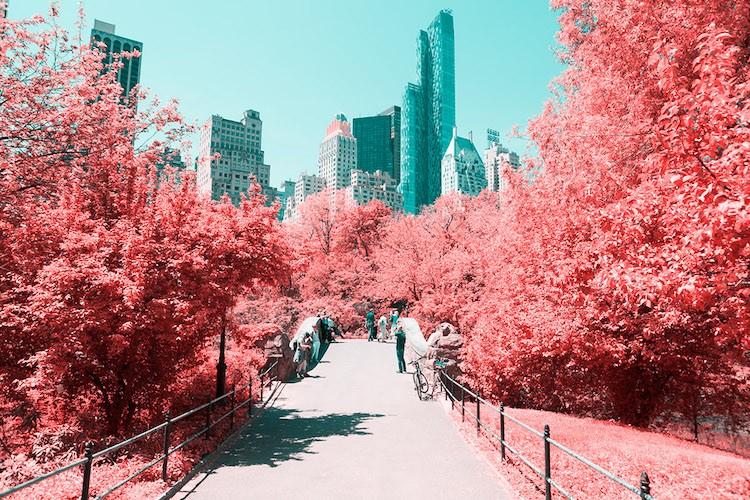 paolo-pettigiani-infrared-new-york-1